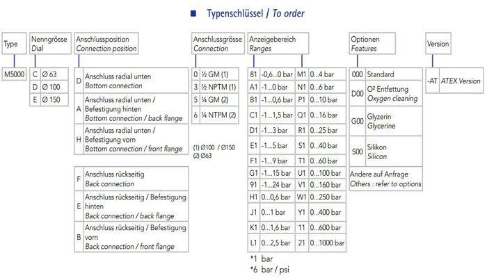 chọn model đồng hồ áp suất georgin